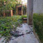 Garden - Offina